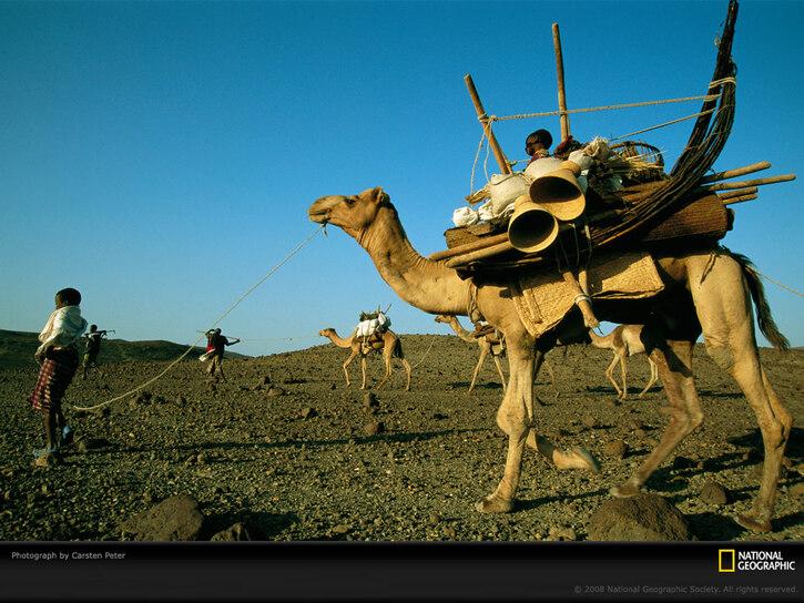 10 Images de Natl. Geographic 4