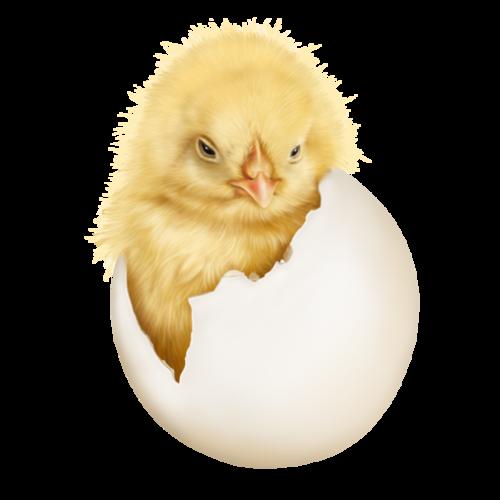 bientôt Pâques !