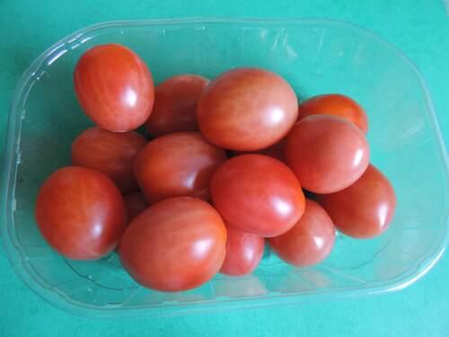 Potager : petite récolte du jour...