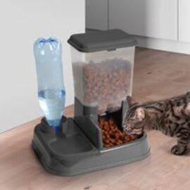 """Résultat de recherche d'images pour """"chat heureux gamelle croquett et eau"""""""