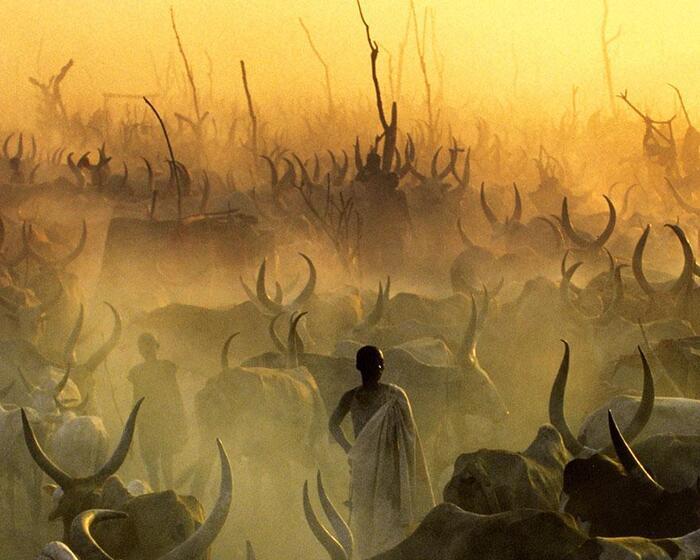 Sud-Soudan : Ces photographies saisissantes nous montrent la vie quotidienne du peuple Dinka