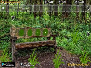 Jouer à Big Wooden bench forest escape
