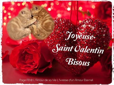 """Résultat de recherche d'images pour """"images gratuites de saint valentin"""""""
