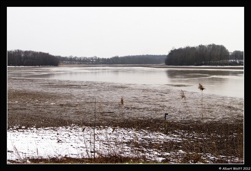 Repos hivernal sur l'étang