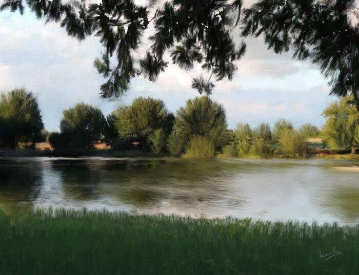 Lac de Mesnard la Barotière , en Vendée