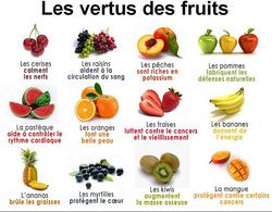 Comment conserver les fruits et légumes. Et la vertu des fruits.