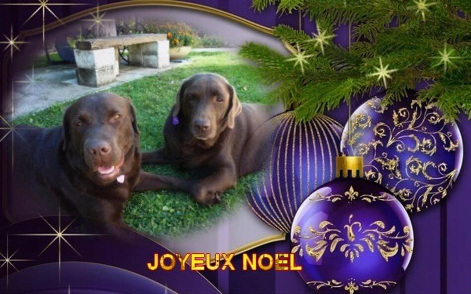 Joyeux Noël à tous.