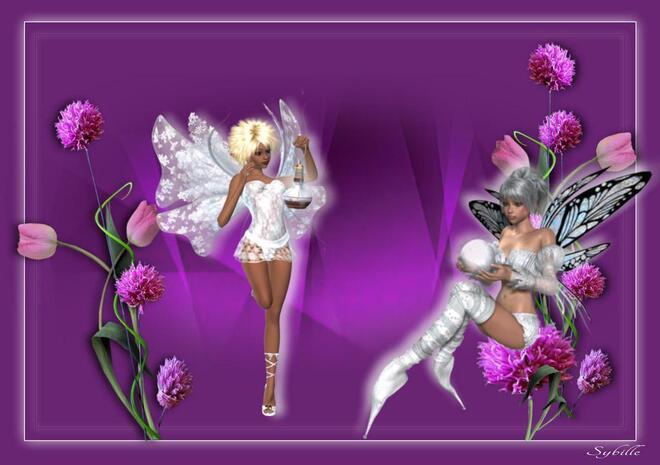 Rose & Mauve