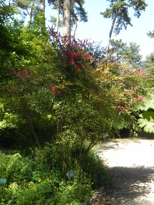 Parc de Vincennes