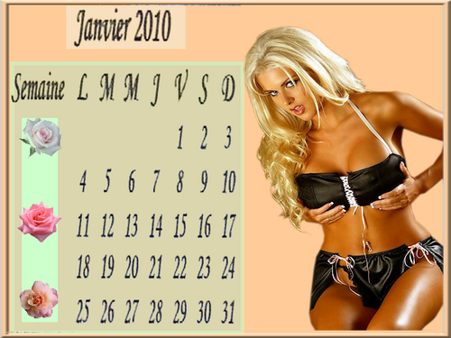 calendriers divers