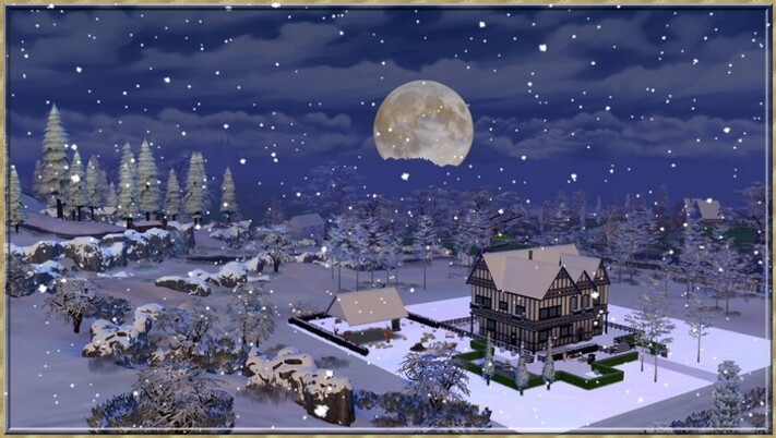 Hiver Sims
