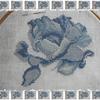fleur bleue 3