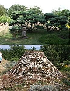 jardin zen 24