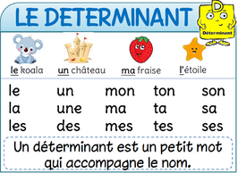 Affichages de français déterminant