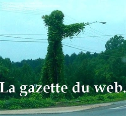 La gazette du web en vrac (12). Mi-mousson !