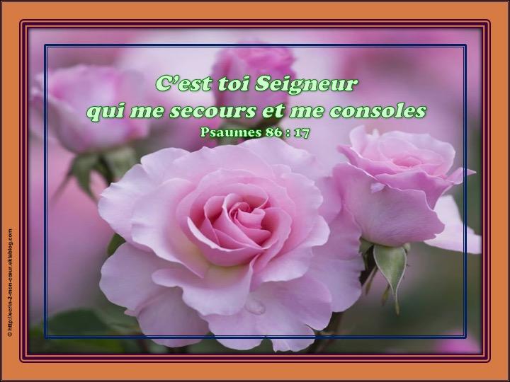 Dieu, mon secours et ma consolation - Psaumes 86 : 17