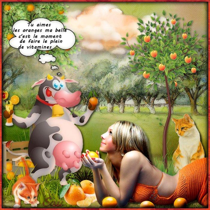 * Oranges Vitamines * Atelier de Babouchka *