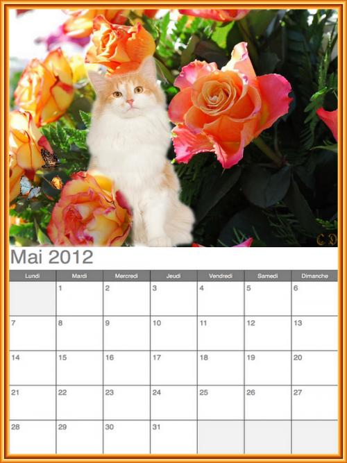 2ieme serie de 4 calendriers 2012 a imprimer