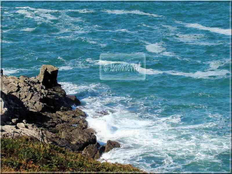Brise de Mer