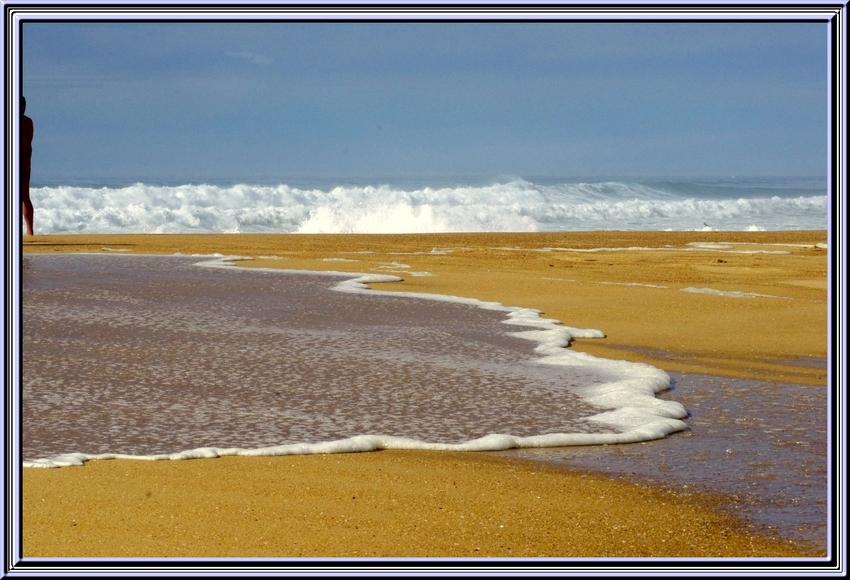 les vagues de la côte landaise