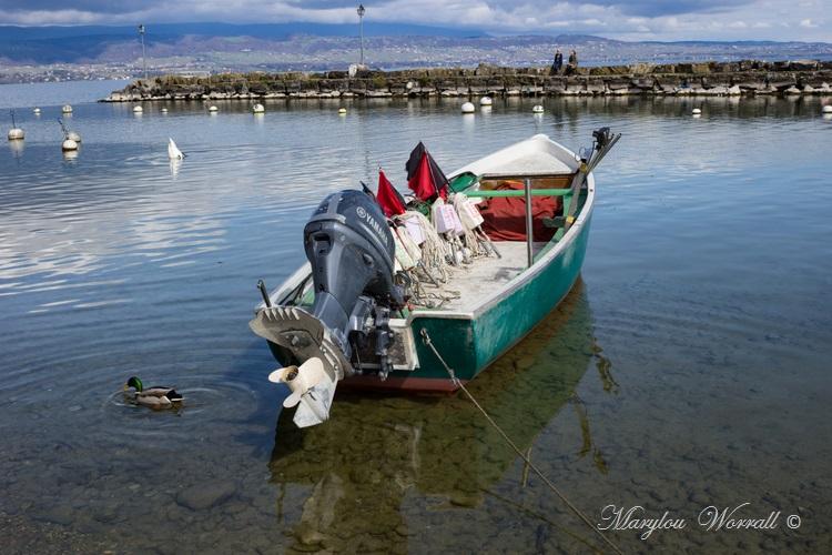 Pays de Savoie : Yvoire le lac Leman