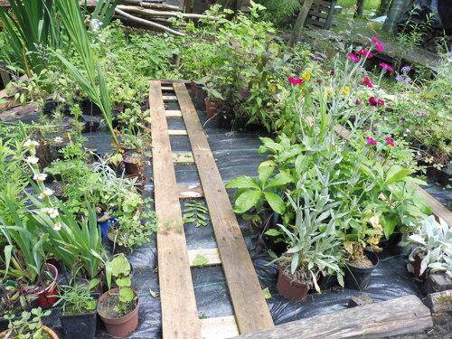 Le jardin de Gilles 2016
