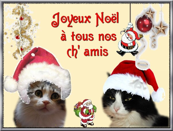 C'est Noël ......
