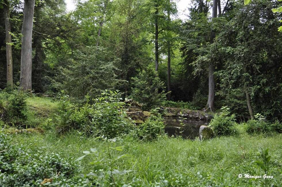 Jardins Anglo-chinois