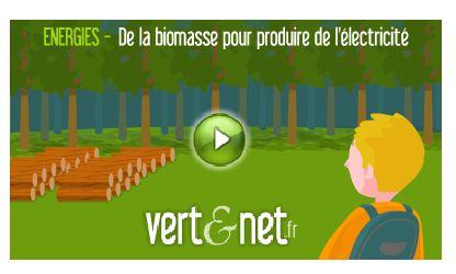 Animations Vert et Net