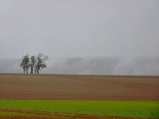 Moselle en automne 36 Marc de Metz 16 10 2012