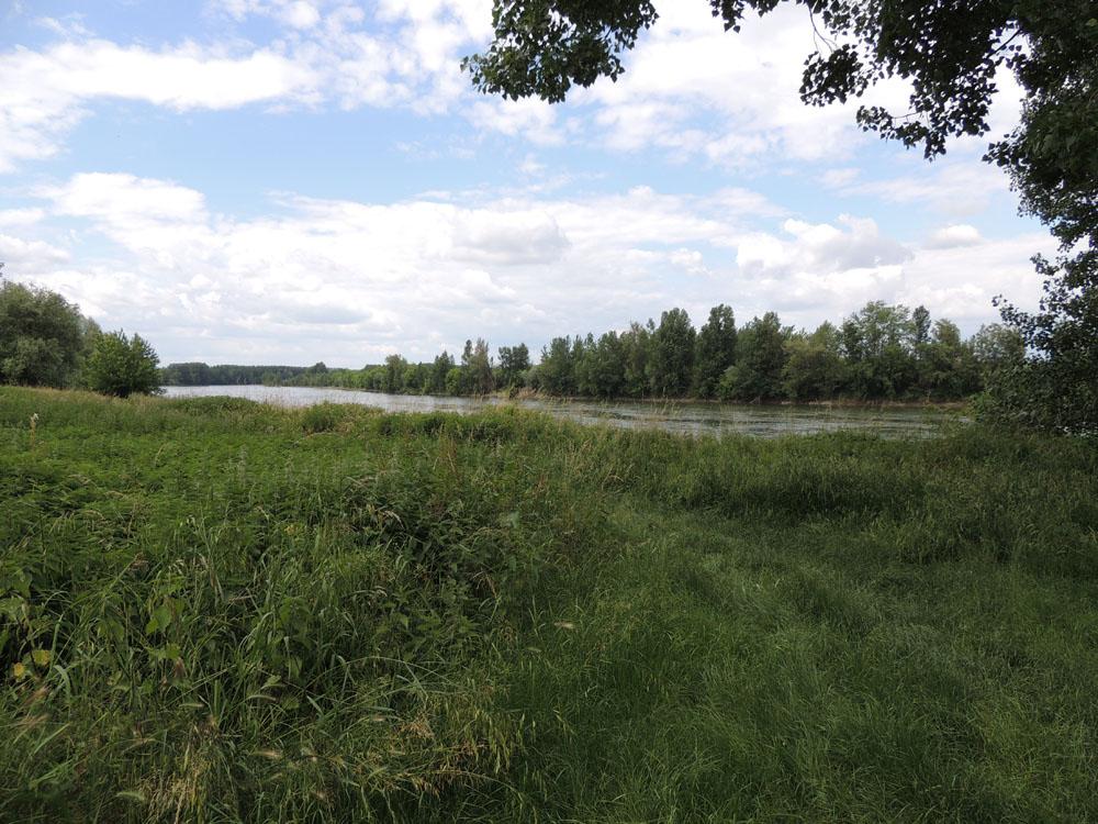 BALADE LE LONG DU CANAL DE  GARONNE.