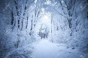 L'hiver ...