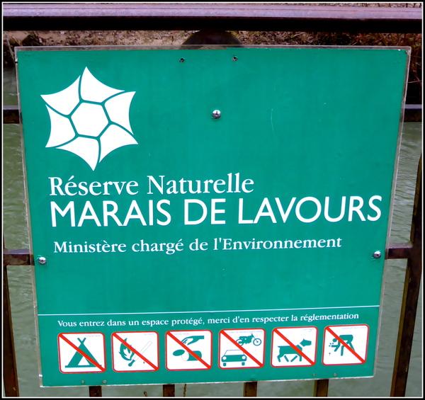 Le Marais de Lavours, après le mauvais temps !!