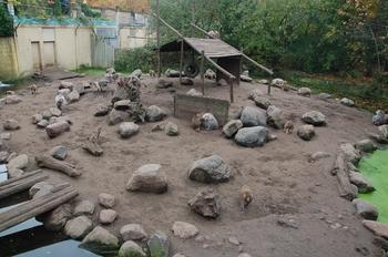dierenpark amersfoort d50 2011 049