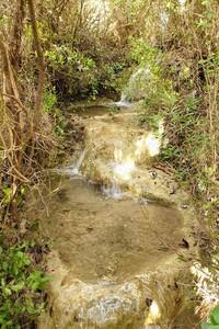 Sources de Cauvières