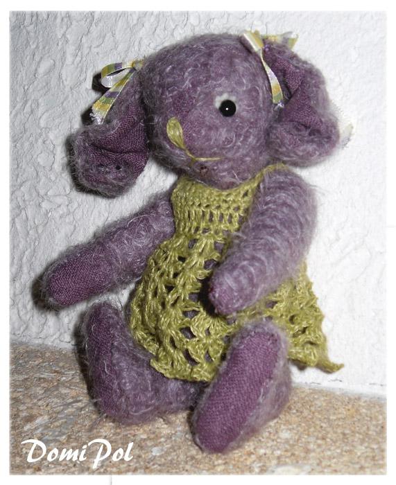 Paquerette lapine violette]