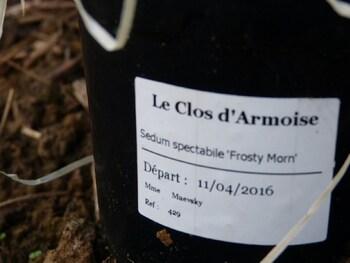 Arrivage du Clos d'armoise