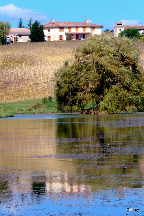 Tarn : retenue d'eau avec reflets ... n 1