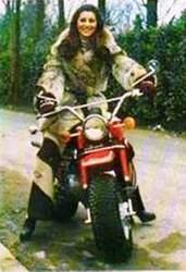 Septembre 1973 / Mars 1974 : L'ensemble zébré.