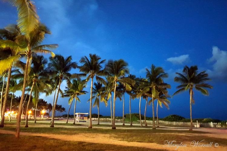 Floride : Premières impressions