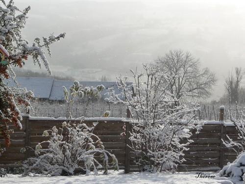 Première neige 26-27 novembre 2011 (6)