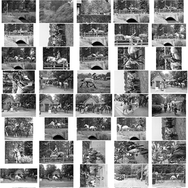 Planche Contact 5