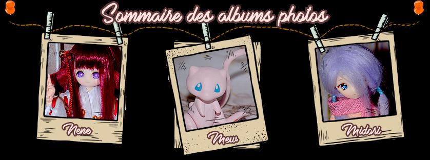 Albums photos