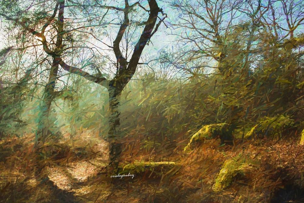 Peintures forestières