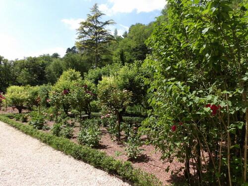Le domaine royal de Château-Gaillard ( 3 )