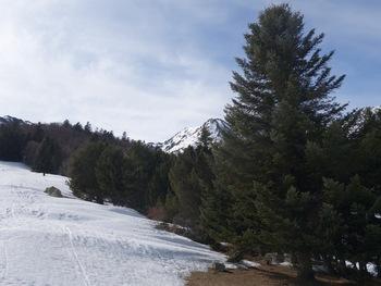 Au bord de la piste de ski