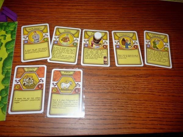 35 - Agricola 4 (cartes)