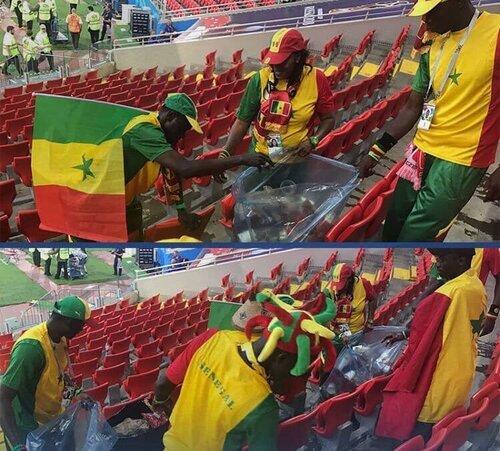 Coupe du monde, l'exemple dans les tribunes