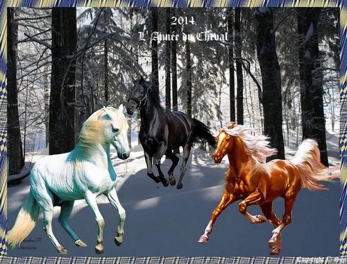 2014 L'année du cheval