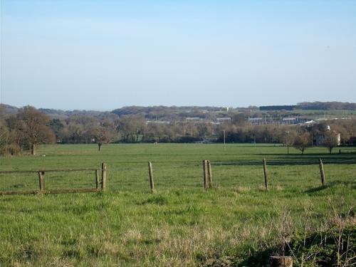 * Paysages bucoliques du Kent